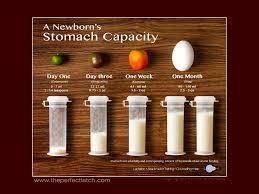 Newborn stomach capacity