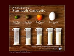 Newborn stomach capacity