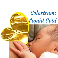 Colostrum (1)